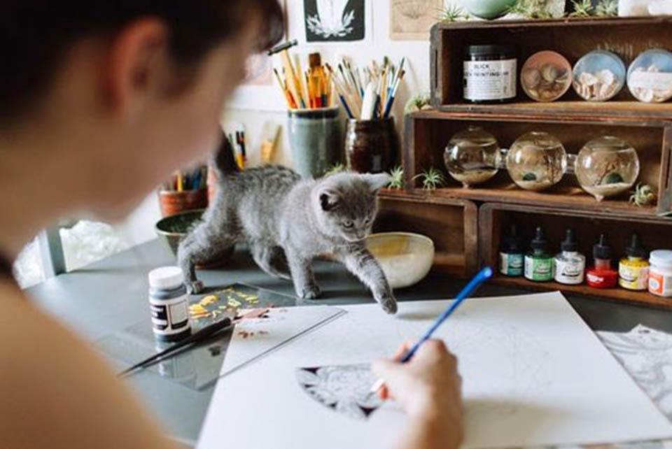10 Важных Причин стать Иллюстратором